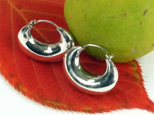 Creoles and silver earring