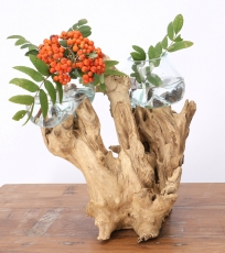 Exotic root wood vase with two glasses - 2 * Ø glass up to 10 cm
