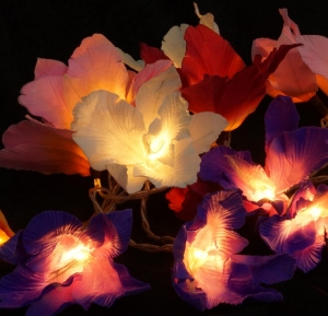 Lotus LED chain of lights 20 pcs - colorful