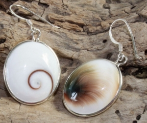 Silver earrings with `Shiva shell` - 27
