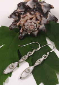 Silver earrings with `Shiva shell` - 40