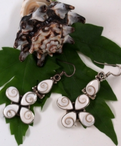 Silver earrings with `Shiva shell` - 41