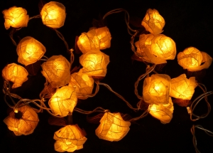 Flowers chain of lights 20 pcs. Rose - white